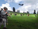 A Soldier from Headquarters and Headquarters Troop, 1st Squadron, 91st Cavalry Regiment (Airborne), watches cattle make room while a CH-47 helicopter prepares to land on Landing Zone Shetland during Operation Saray Has July 19 near Forward Operating Base Naray, Afghanistan.